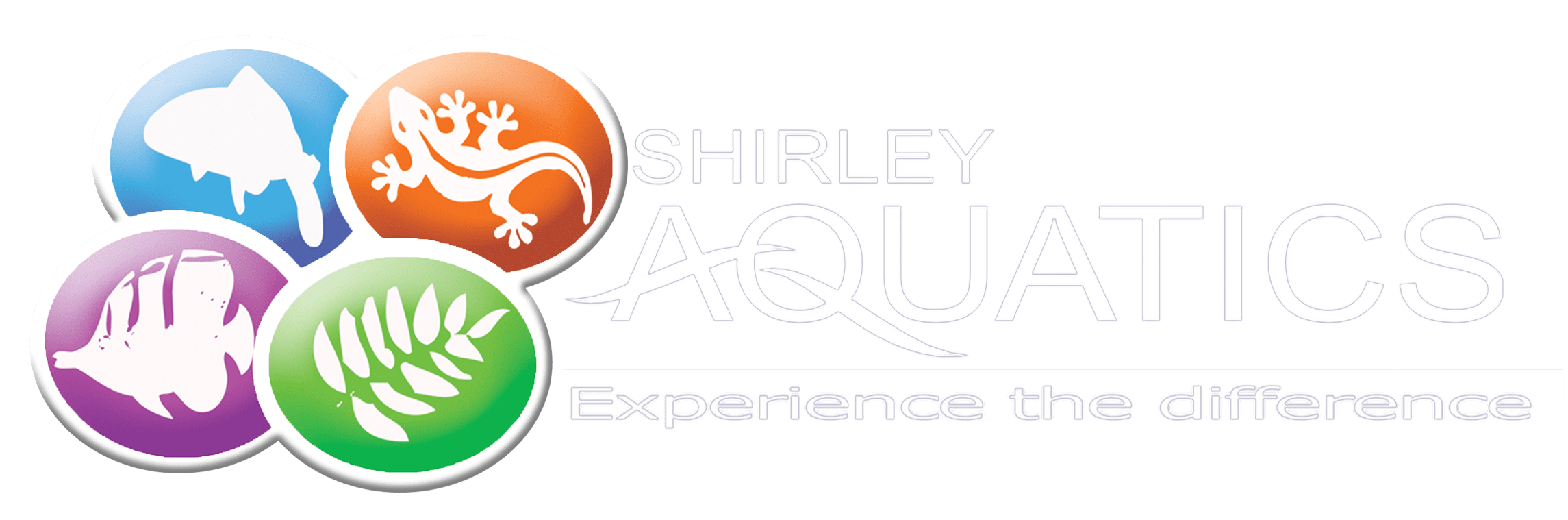 Shirley Aquatics